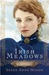 Irish Meadows (Courage to Dream, #1)