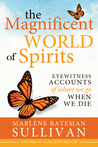 The Magnificent World of Spirits: Eyewitness Accounts of Where We Go When We Die