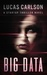 Big Data: A Startup Thriller Novel