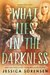 What Lies in the Darkness (Shadow Cove, #1)