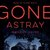 Gone Astray (DC Maggie Neville)