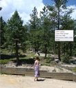 Tessa outside the National Forest (used as the inspiration for the setting in Dark Moon Vale)
