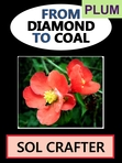 From Diamond to Coal, by Sol Crafter