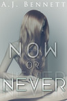 Now or Never (Alexander Twins, #1)