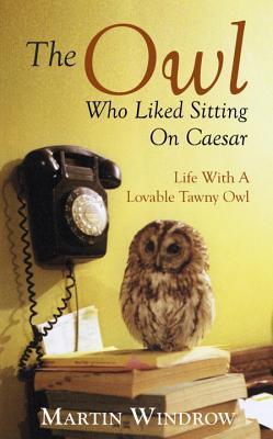 owl humor reading - photo #15