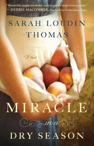 Miracle in a Dry Season (Appalachian Blessings, #1)
