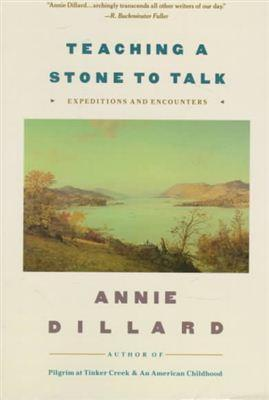 an analysis of the book read by annie dillard on the writing life The writing life by annie dillard dillard's hauntingly ethereal prose soars even  when she's writing about writing that's rare i resonate with her honesty about.