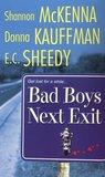 Bad Boys Next Exit (Men of Rogues Hollow, #2)