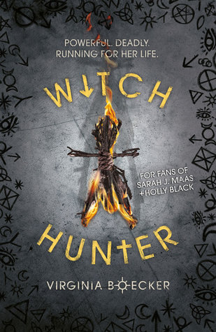 Witch Hunter (The Witch Hunter, #1)