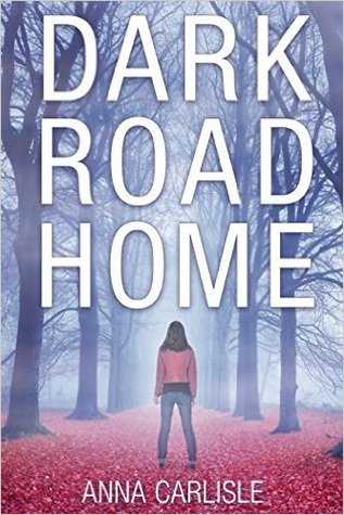 Dark Road Home (Gin Sullivan, #1)