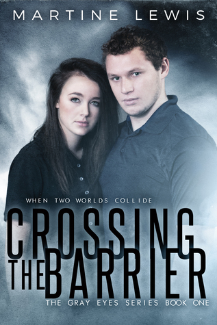 Crossing the Barrier Cover
