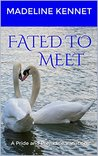 Fated to Meet: A Pride and Prejudice Variation