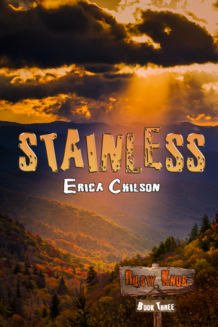 Stainless by Erica Chilson